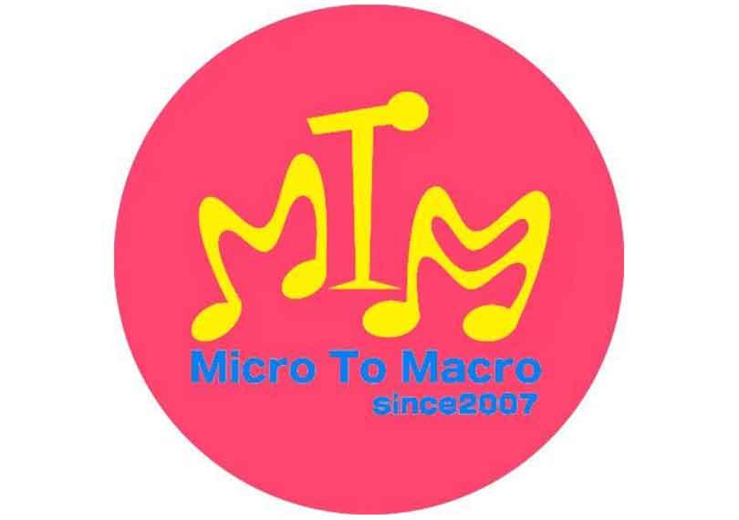 Micro To Macro